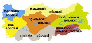 Türkiye Neden 7 Bölgeye Ayrılmıştır?